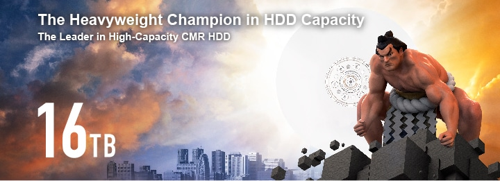 The Heavyweight Champion in HDD Capacity