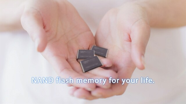 Toshiba NAND Flash Memory