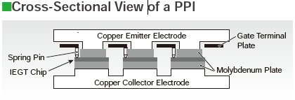 Cross-Sectional View Of a PPI